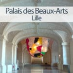 vignette avec une vue intérieure du palais des Beaux-Arts de lille