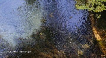 vue des bulles à la surface de l'eau de la fontaine bouillante de Stambruges