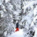 promenades de ski de fond à la station de Weywertz en Belgique, article mis en ligne par Nord Découverte