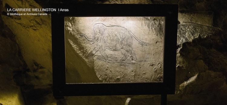un graffiti dessiné par un soldat dans une galerie de la carrière Wellington d'Arras, un article Nord Découverte