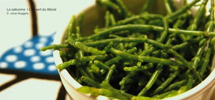 assiette de salicorne fraîche