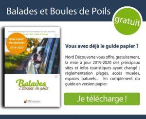 visuel permettant le téléchargement des mises à jour du guide Balades et Boules de Poils