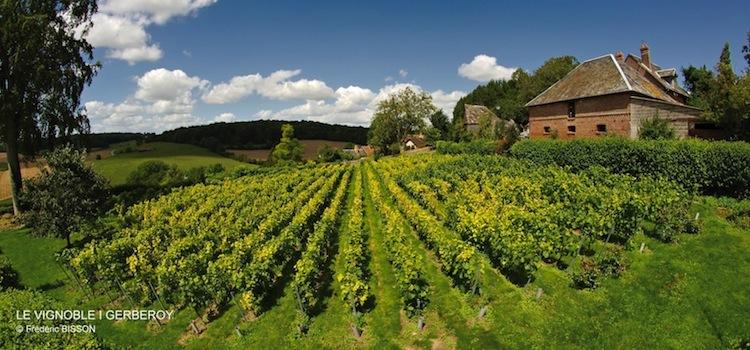 vue de la vigne de Gerberoy