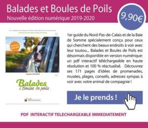 offre guide Balades et Boules de Poils