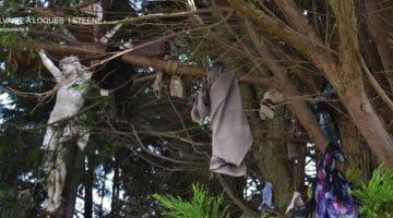 photo des loques accrochées au calvaire de Steene