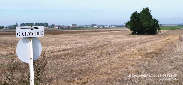 vue du bosquet d'arbres qui entoure le calvaire à loques de Steene