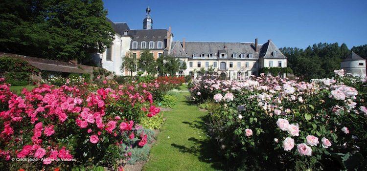 vue de la roseraie dans les jardins de l'abbaye de Valloires
