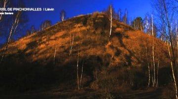 les flancs boisés du terril de Pinchonvalles de Liévin