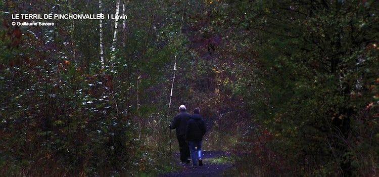 sentiers forestiers du terril de Pinchonvalles de Liévin