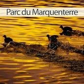 mini vignette du parc du Marquenterre en Baie de Somme