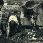 photo de femmes ramassant à la main les galets
