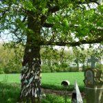 l'arbre à loques et à clous d'Herchies