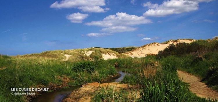 dunes d'Ecault le long de la plage de Saint-Etienne-au-Mont