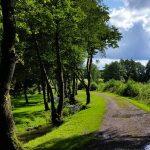 chemin dans la campagne en Ardennes belges
