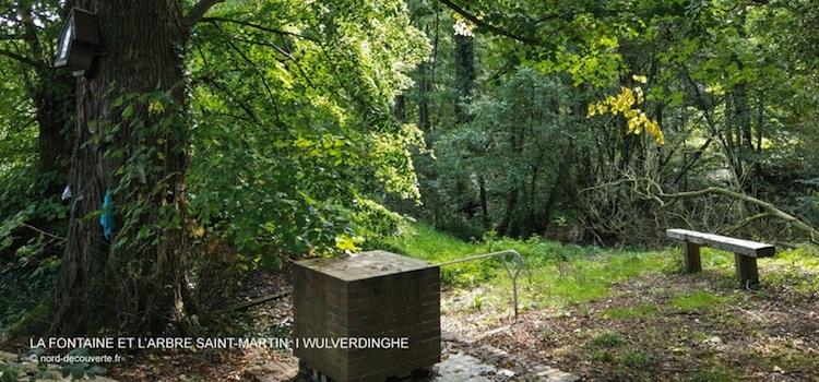vue de La fontaine miraculeuse Saint-Martin de Wulverdinghe avec son autel