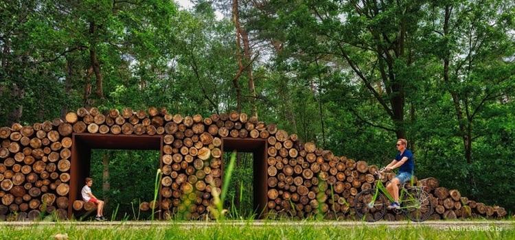 abri piéton en rondin de bois dans la forêt de Bosland du Limbourg